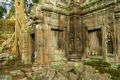 Sikten till fördärvar av templet för Ta Prohm i Siem Reap, Cambodja Arkivbilder