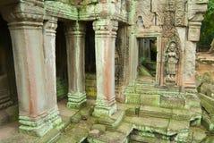 Sikten till fördärvar av templet för Ta Prohm i Siem Reap, Cambodja Royaltyfria Bilder