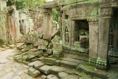 Sikten till fördärvar av templet för Ta Prohm i Siem Reap, Cambodja Arkivbild