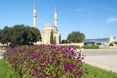 Sikten till moskén i högland parkerar Arkivfoto