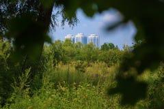 Sikter av byggnaden från skogen Arkivbild