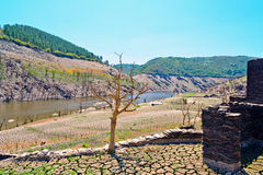 Sikter av den Belesar behållaren i den Minho floden Royaltyfri Fotografi