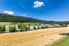 Sikter av den lilla byn Boppelsen i kantonen av Zurich Royaltyfri Bild