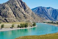 Sikter av den turkosKatun floden och de Altai bergen, Ryssland royaltyfri bild