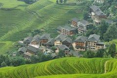 Sikter av gröna Longji terrasserade fält och den Dazhai byn Arkivbild
