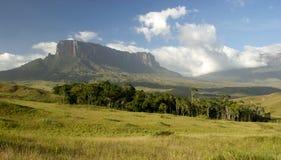Sikter av monteringen Roraima, Venezuela Arkivbild