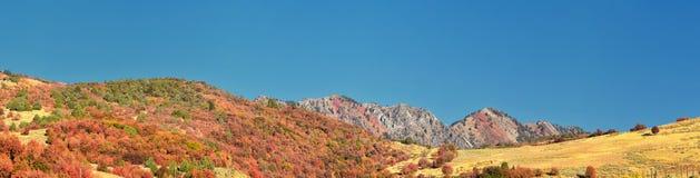 Sikter för landskap för askfläderkanjon, populärt som är bekanta som sardinkanjonen, nord av Brigham City inom de västra lutninga arkivbilder