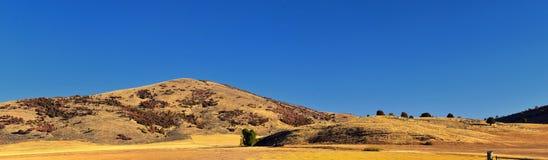 Sikter för landskap för askfläderkanjon, populärt som är bekanta som sardinkanjonen, nord av Brigham City inom de västra lutninga royaltyfri foto