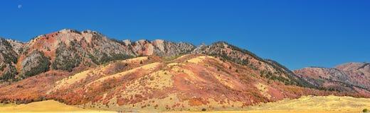 Sikter för landskap för askfläderkanjon, populärt som är bekanta som sardinkanjonen, nord av Brigham City inom de västra lutninga royaltyfri bild
