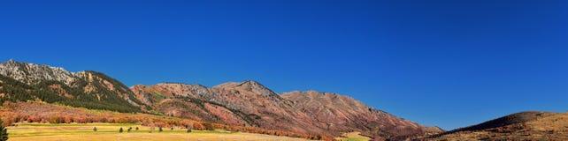 Sikter för landskap för askfläderkanjon, populärt som är bekanta som sardinkanjonen, nord av Brigham City inom de västra lutninga royaltyfri fotografi