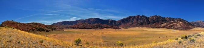 Sikter för landskap för askfläderkanjon, populärt som är bekanta som sardinkanjonen, nord av Brigham City inom de västra lutninga arkivbild