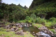 Sikter från Limahuli trädgårdar, Kauai ö Arkivbilder