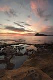 Sikter till Lion Island från grön punkt, pärlemorfärg strand Arkivfoton