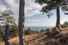 Siktspunkt på överkanten av berget arkivfoto