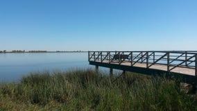 Siktspunkt vid floden royaltyfria bilder