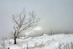 Silêncio branco - última neve nas montanhas fotografia de stock