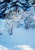 Silêncio do inverno fotos de stock royalty free
