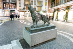 Sila's Wolf by M. Rotella, Cosenza, Italy Stock Photo