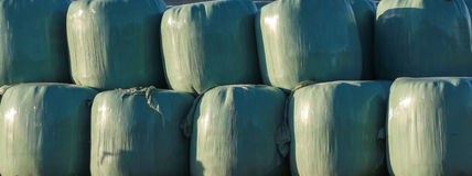 Silage In bags Royalty Free Stock Photo