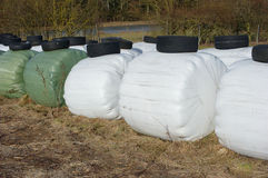 Silage bales Royalty Free Stock Photography