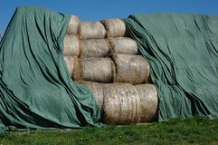 Silage Bales stock photos