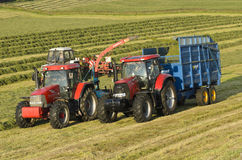 Silage Collection Stock Image