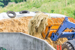 Silage stock photos
