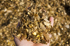 Silage Royalty Free Stock Photo