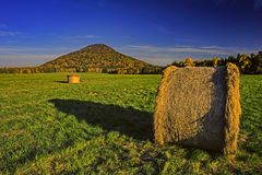 Free Silage In Meadow Stock Image - 119808061