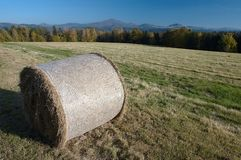 Silage in the meadow Stock Image