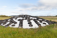 Silage storage. Royalty Free Stock Photo