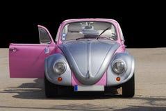 Silber-überzogener und rosa Käfer Stockfotos