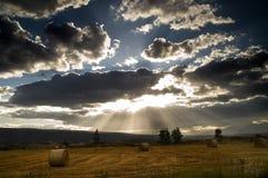 Silber-gezeichnete Wolken über Feld Stockfotos