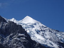 Silberhorn die Schweiz stockbilder