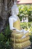 silberne Buddha-Statue mit goldener Robe im Garten Lizenzfreie Stockfotos