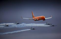 Silberne Falcons und Mango-Luft Stockfotos