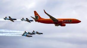 Silberne Falcons und Mango-Luft Stockfoto