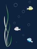 Silberne Fische unter der Meerespflanze stock abbildung