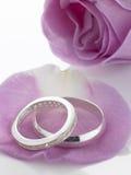 Silberne Hochzeits-Ringe, die auf Rosen-Blumenblättern stillstehen Lizenzfreie Stockbilder