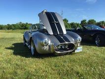 Silberne Kobra mit schwarzen Streifen an Autos und Kaffeeereignis in Komoka Ontario stockbild
