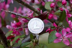 Silberne Litecoin-Münze Lizenzfreie Stockfotografie