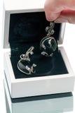 Silberne Ohrringe mit schwarzem Achat in einem Kasten Lizenzfreies Stockfoto
