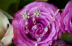 Silberne Ohrringe und Halskette auf Rosarose mit Tautropfen Stockbilder