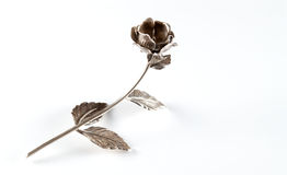 Silberne Rose Lizenzfreies Stockbild