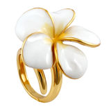 Silberne runde Mode der Ohrringe stilvoll Lizenzfreie Stockfotografie