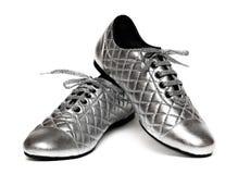 Silberne Schuhe Stockbilder