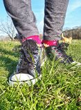 Silberne Schuhe in den Wildflowers, Lizenzfreie Stockbilder