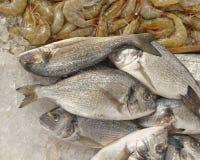 Silberne Seebrachsen für Verkauf Lizenzfreie Stockfotografie