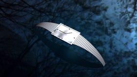 Silberne Uhr Lizenzfreie Stockbilder