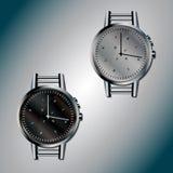 Silberner Ant Watch Stockfotografie